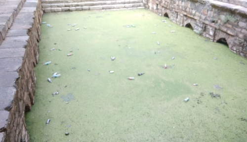 Rajon Ki Baoli Dirty Green Water
