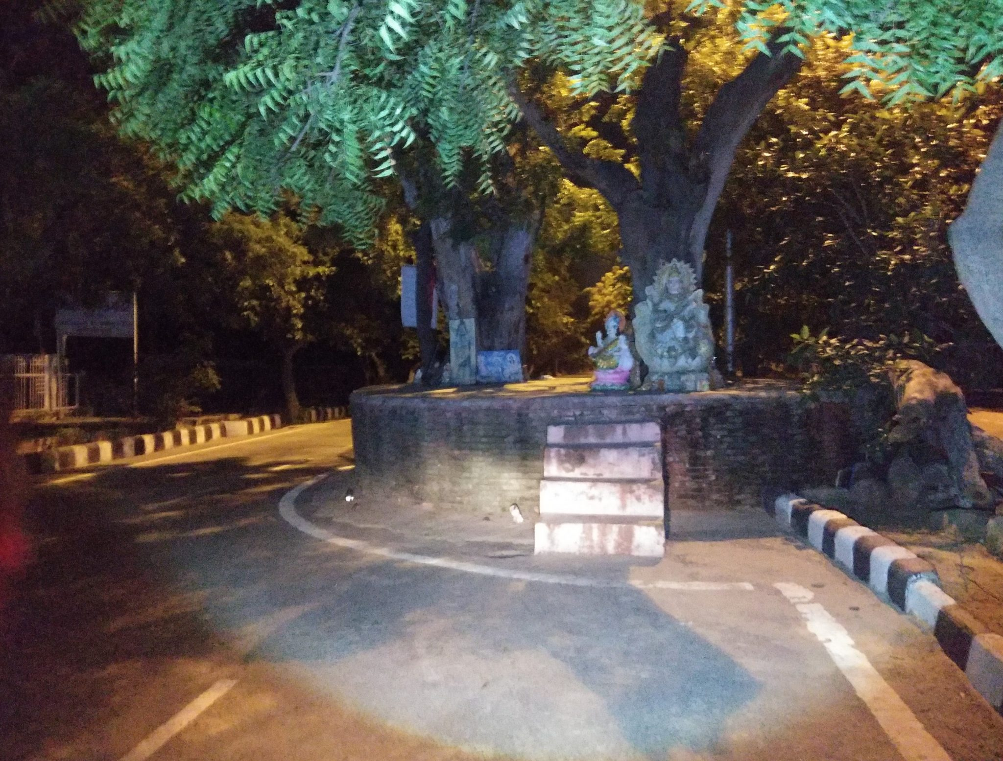 Haunted Tree Of Dwarka Sector 9