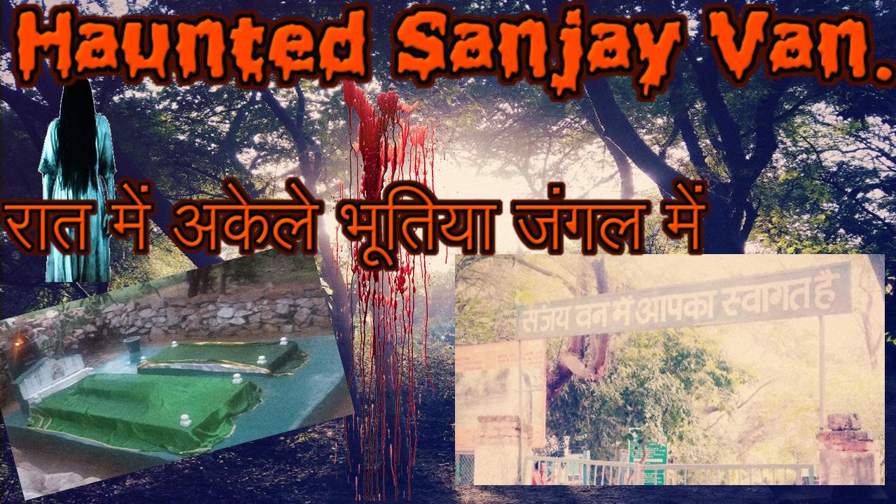 Sanjay Van At Night