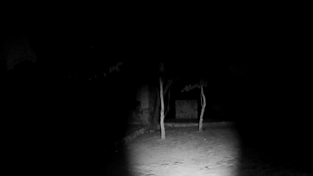 My In Night At Bhuli Bhatiyari Ka Mahal