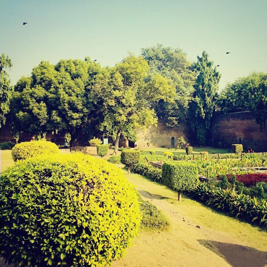 Garden of Shaniwar Wada
