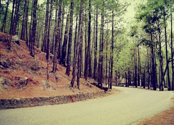 Chudail Baudi Haunted Road